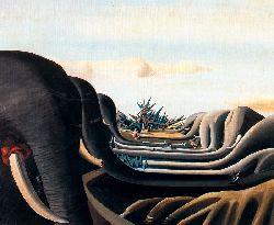 Cementerio De Elefantes O Bosque De Elefantes